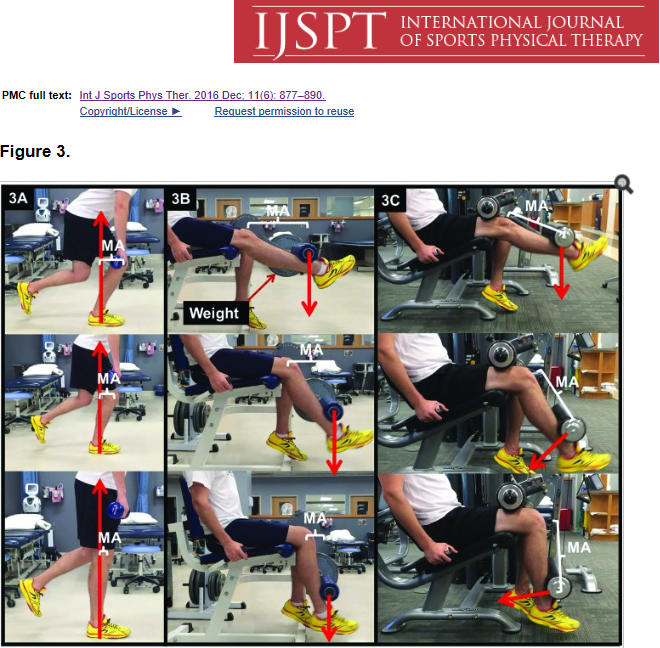 International journal of sports physical therapy: picture describing different exercises to perform during quadriceps strenghtening program
